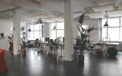 How to Decorate your Perfect Office